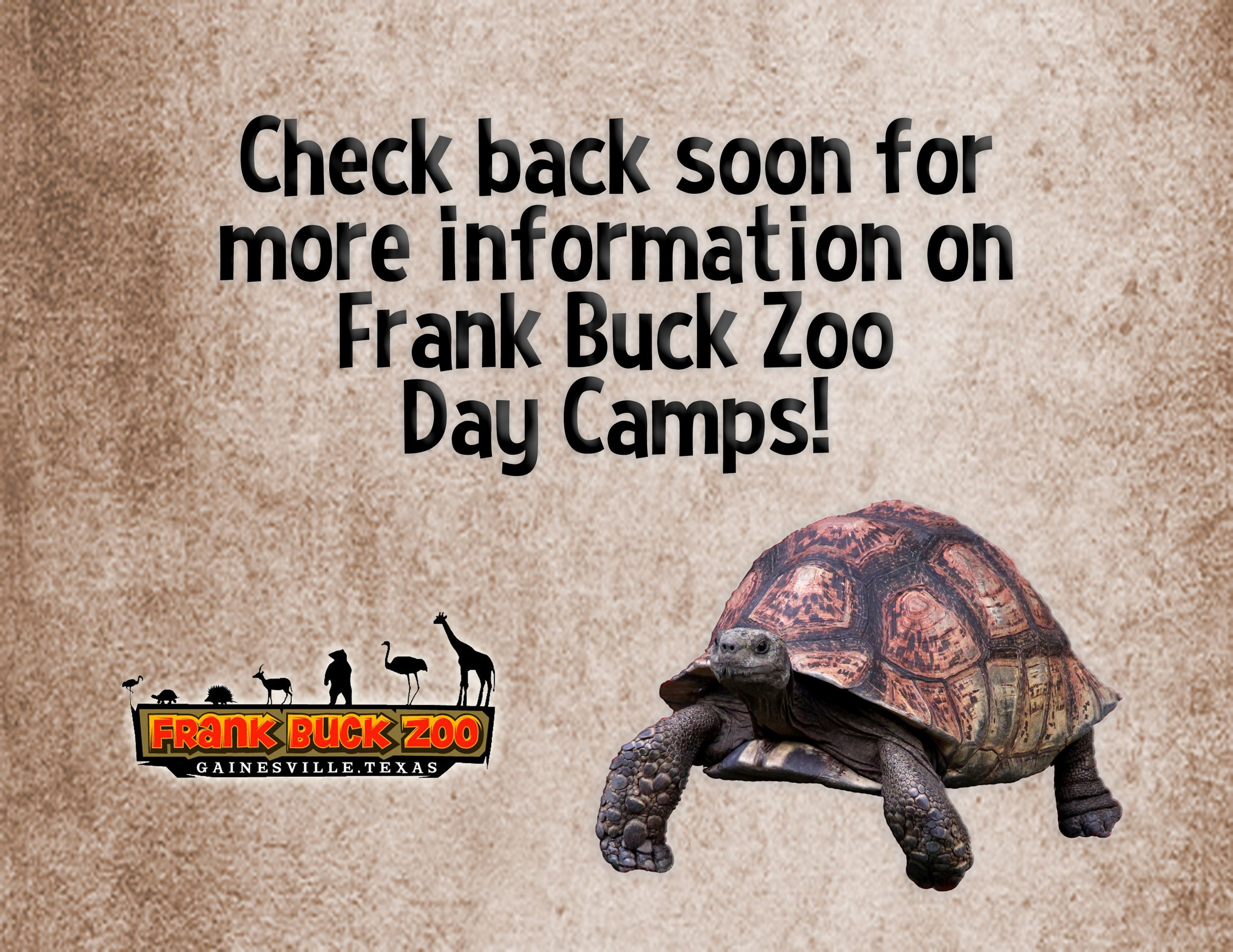 Check Back Soon for Information on Day Camps