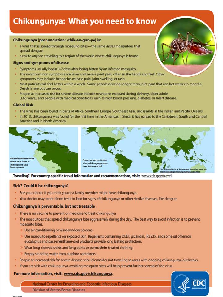Chikungunya - What you need to know.